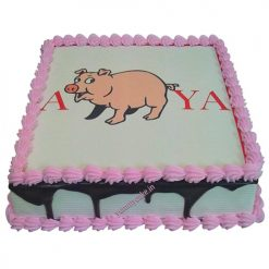 Square Shaped Piggy Cake