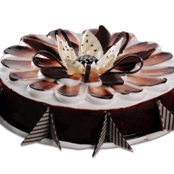 Yummy Chocolate Cakes