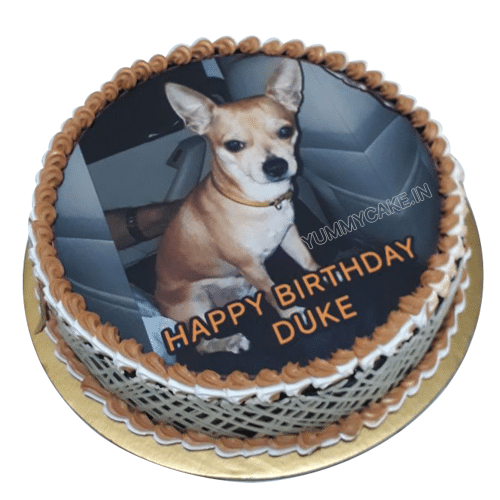 Cartoon Cake Dog Birthday